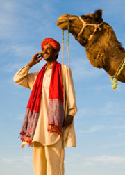 Arab on cell phone with camel